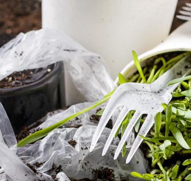 Plastik im Boden – Gefahr oder Panikmache?